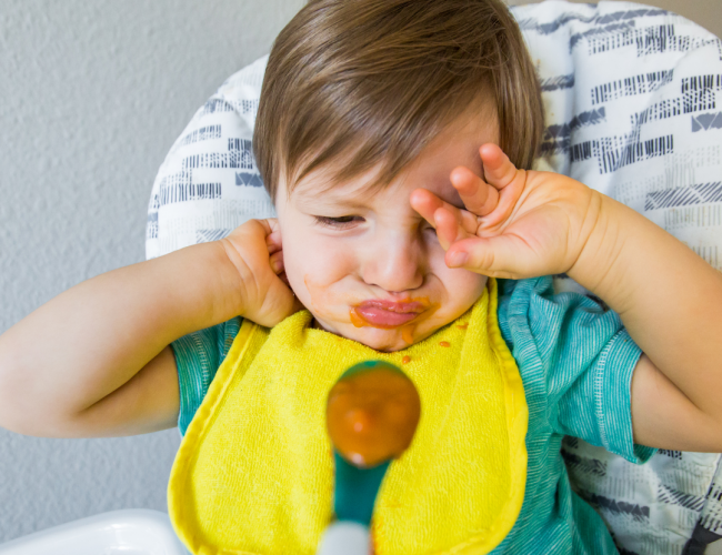 Best Food for Picky Toddlers
